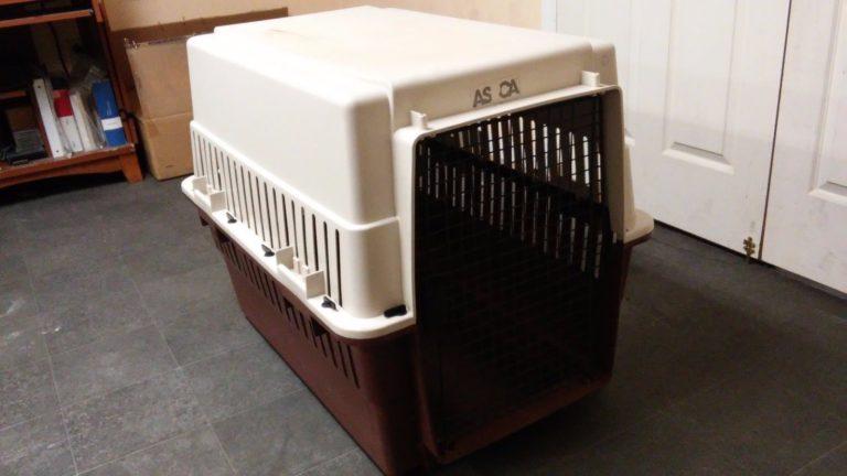 AA Dog Crate